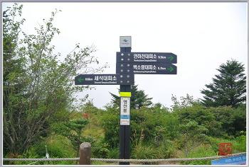 [낙남정맥] 영신봉-음양수-삼신봉-외삼신봉-고운동재