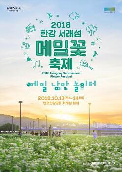 [서울] 2018 한강 서래섬 메밀꽃 축제 개최 안내