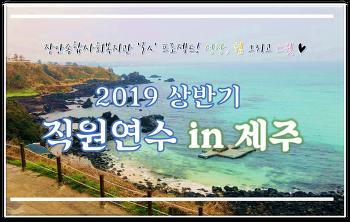 2019 상반기 직원연수 in 제주