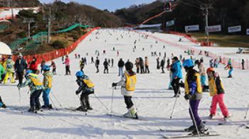 스키 타는 법 어렵지 않아요! 기초부터 비발디파크 스키학교!