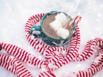 컴퓨터 바탕화면 Christmas Hot Chocolate With Marshmallows HD Wallpaper 무료 배경 이미지