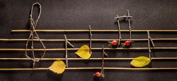 [11시 콘서트 초대 이벤트] 푸르른 서정이 듬뿍, 가을의 세레나데
