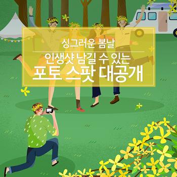 싱그러운 봄날, 인생샷 남길 수 있는 포토 스팟 대공개