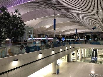 인천공항 제2여객터미널 탐방 (Incheon Airport T2)