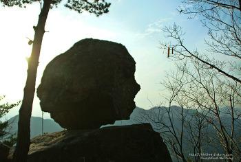 산에서 만난 특별한 예술작품