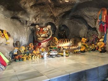 [네번째 나홀로 여행 7탄] 호랑이 동굴 사원(Tiger Cave Temple ; วัดถ้ำเสือ 왓탐쓰아)