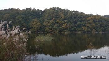 [배스낚시 2018년 10월말-충북 옥천 군북면 지오리 대청호]낮에 한마리