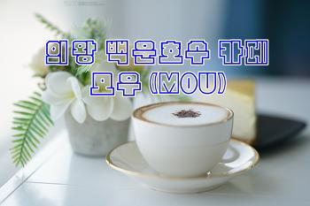 의왕 백운호수 카페 /모우(mou)