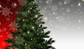 크리스마스 트리의 기원