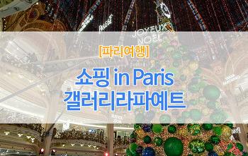 [파리여행] 파리쇼핑필수코스 #갤러리라파예트 #백화점기프트쿠폰 #파리백화점쇼핑 #파리크리스마스2018