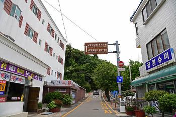 문화와 역사의 향기가 넘쳐나는 통영 남망산 조각공원! (통영여행)