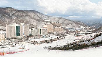 비발디파크 스키월드 스키보드 보관소 락카 판매