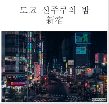 [2018도쿄(6)] 도쿄 신주쿠의 밤 산책