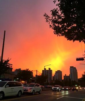 하늘을 붉게 물들인 노을~