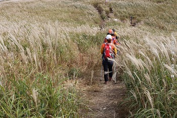 양산 천성산. 억새와 하나가 된 길을 따라 걷다.