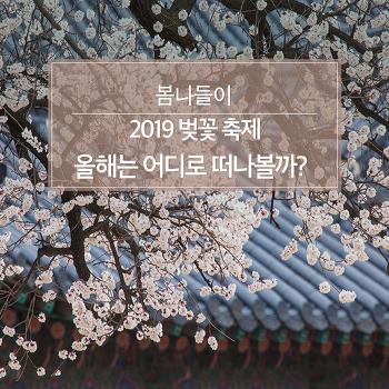 2019 벚꽃 축제 올해는 어디로 떠나볼까?