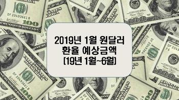 2019년 1월 원달러환율 예상금액(19년 1월~6월)