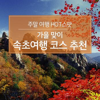주말 여행 HOT스팟 : 가을 맞이 속초여행 코스 추천