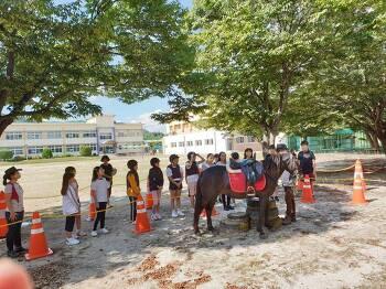 봉양초 학교에서 배우는 방과후 승마교육