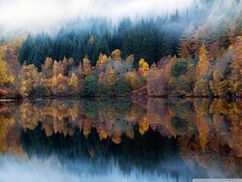 Multicolored Autumn wallpaper