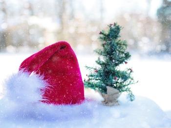 바탕화면 바꾸기  Santa Claus Hat HD Wallpaper 무료 배경 이미지
