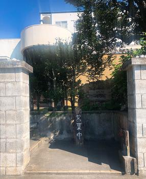 어게인 오키나와 - 테이안다 식당, 잔파곶, 잔파비치, 베이커리 스이엔, 자키미 성터, 포시즌스 스테이크