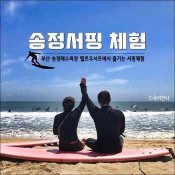 [부산 송정서핑] 송정해수욕장에서 서핑체험 (멜로우서프)