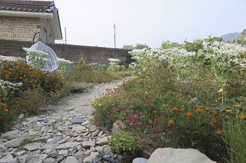 대전 성북동(여름휴가)/20180728