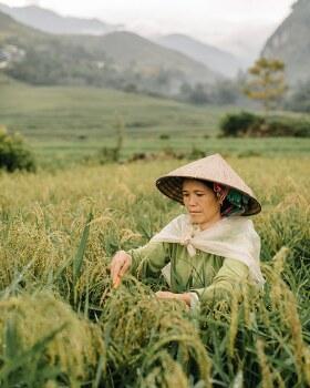 Remarkable Photos of One Man's Journey Across Northern Vietnam 푸르고 푸르른 베트남의 시골 경관