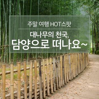 주말 여행 HOT스팟 : 대나무의 천국, 담양으로 떠나요~