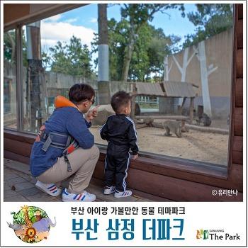 [부산 동물원] 삼정 더파크 입장료, 주차요금, 아이랑 가볼만한 곳