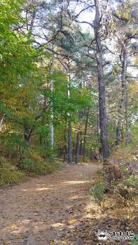 가을 단풍을 즐기기 위해 방문한 경기도 칠보산