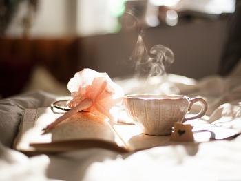 Download Morning Tea HD Wallpaper