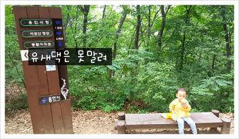 36개월, 4살 똘망이가(유아) 등산하는 법 (대근육 운동, 대근육 키우기, 유아 등산, 유아 숲체험)