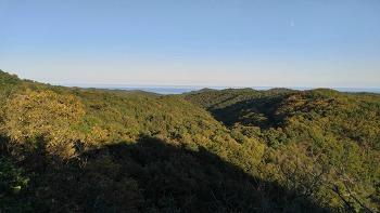 제9회 구룡포 말목장성 달빛 산행 축제 후기