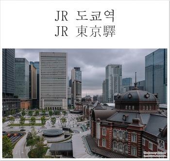 [2018도쿄(5)] 도쿄의 상징 , 고쿄(皇居) 니주바시와 JR도쿄역(東京驛) 마루노우치광장