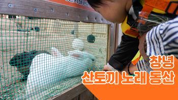 창녕 | 산토끼 노래 동산 2018.11.4