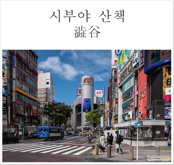 [2018도쿄(7)]도쿄 젊음의 거리 JR시부야역 주변 여행