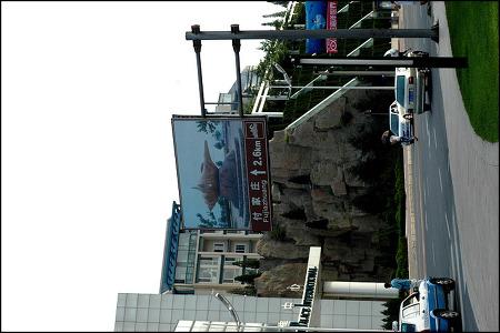 중국 대련 자전거 여행 - 푸장장 풍경구,야생 방목원, 진사탄 9편