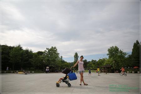 율동공원 나들이/오두막+신계륵/벤츠 GL450 유아 전동차