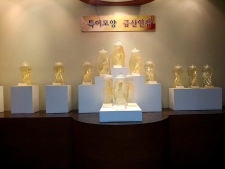 [충남금산여행] 금산 인삼관 & 인삼수산시장의 요모조모