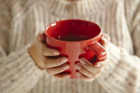 겨울철 건강 지킴이 차(茶) 소개