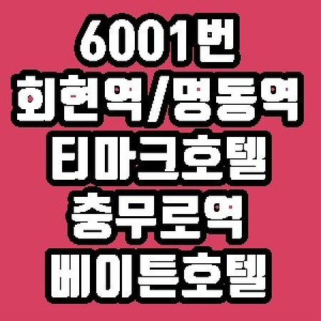 인천공항버스 6001번 회현역 명동역 티마크호텔 충무로역 베이튼호텔 정류장 승차장 탑승위치 요금 소요시간