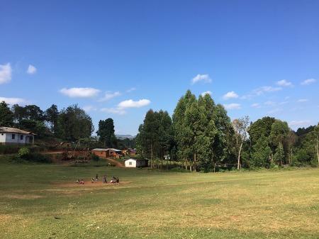 [탄자니아에서 온 편지] 탄자니아 루쇼토 지역과 교통수단을 소개합니다!