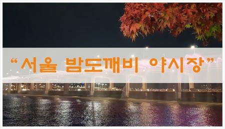 서울 밤도깨비야시장 /반포 한강 달빛무지개분수와 불꽃놀이