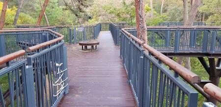 [안면도 여행] 나무사이로 난 하늘길을 걸어보자 '안면도 자연휴양림 & 안면도 수목원'