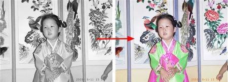 흑백사진이 칼라로 보이는 착시 현상 만드는 프로그램