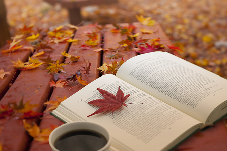 추석 연휴에 읽기 좋은 도서 추천!