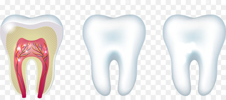 치아살리는 충치치료