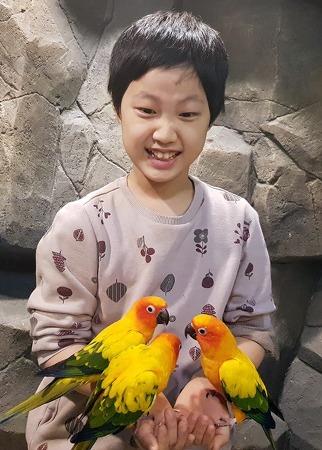 4학년 1학기 학급회장선거 ♡ 울 다솔 부회장 된 이야기